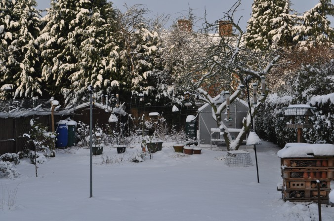 Snowy start