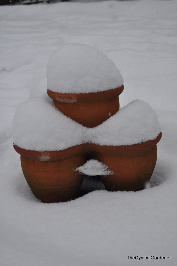 Pots on the snow