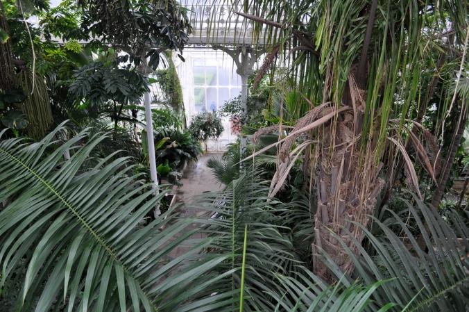 Kew 11.4.13 196