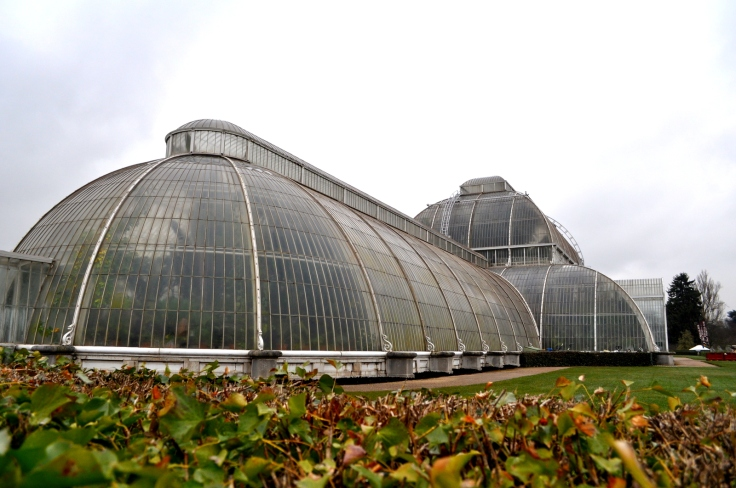 The Palm House.