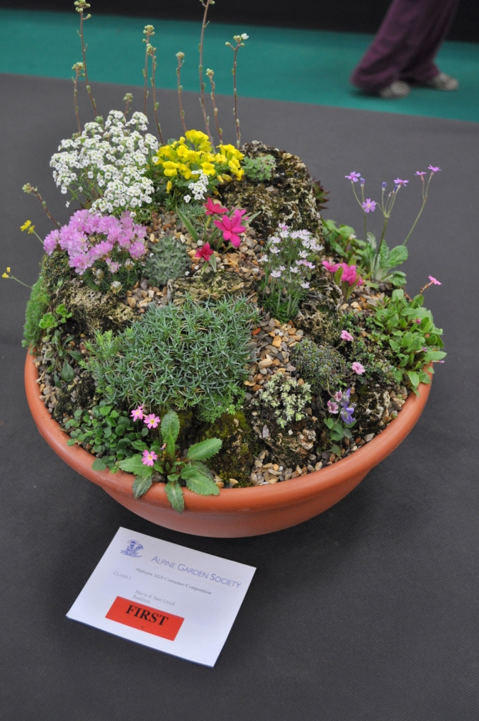 Miniature Garden.