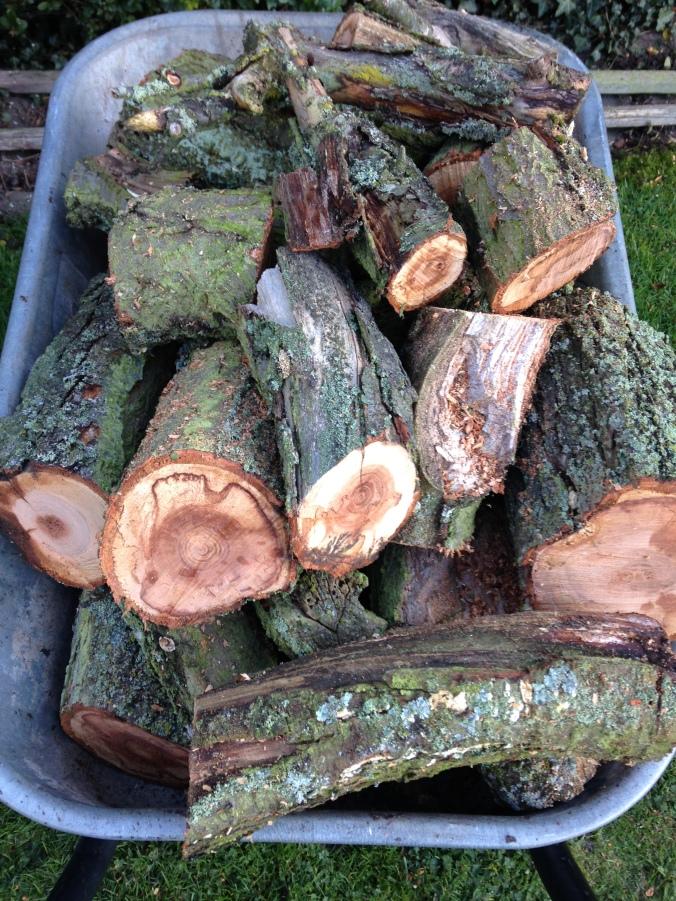 Logs..