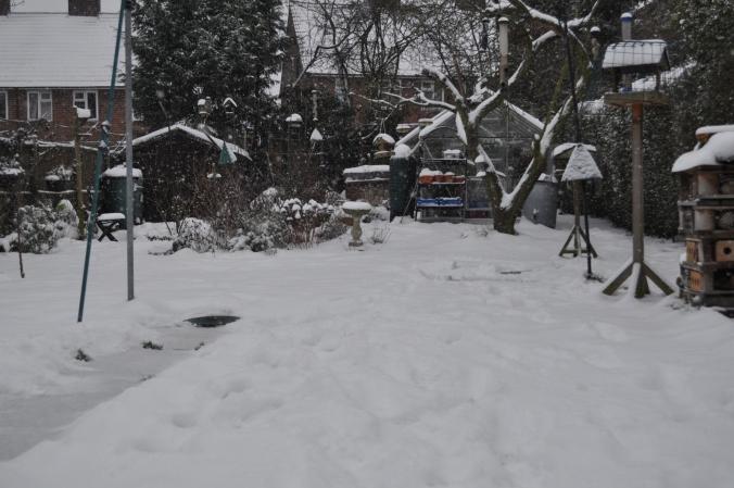 Keeps Snowing.