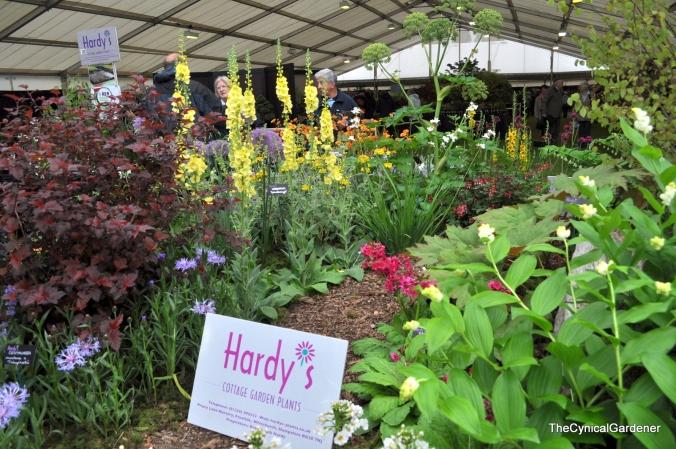 Hardys Cottage Garden Plants.