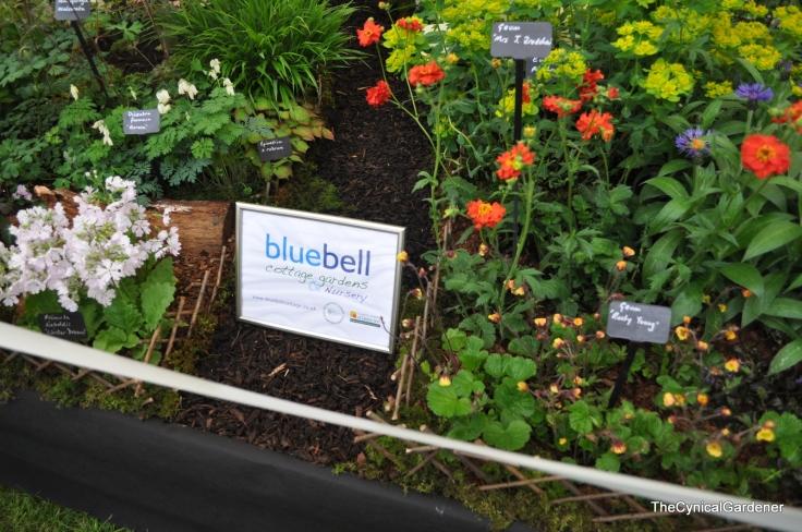 Bluebell Nurseries.