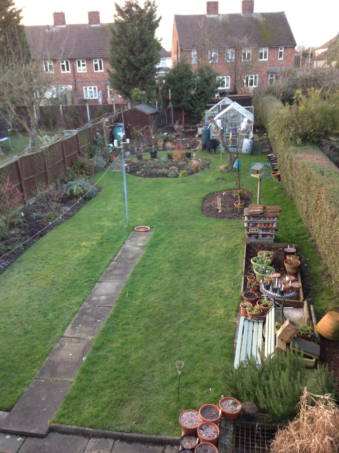Rare Ariel view of the garden, taken when I was on the roof last week. (Dont ask).!