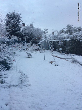 068-snow 048