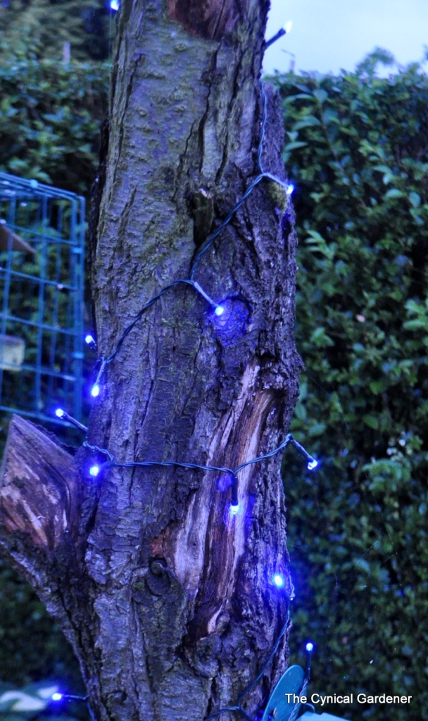 Blue Solar String Lights on dead tree.