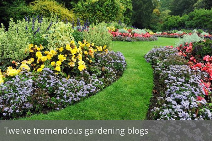 twelve-tremendous-gardening-blogs-lead