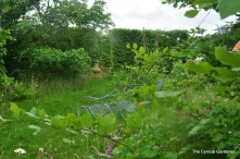 Hedging and naturalistic plantings.