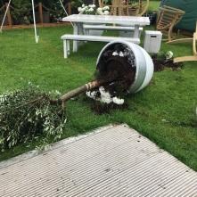 wind damage