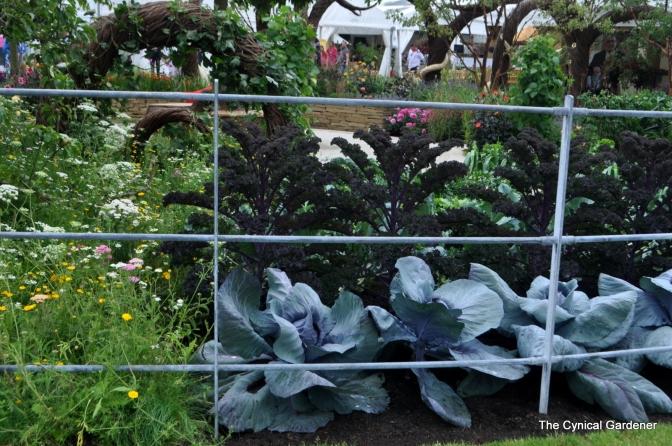 Some Edibles within the Garden.