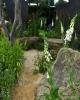 Watch this Space Garden