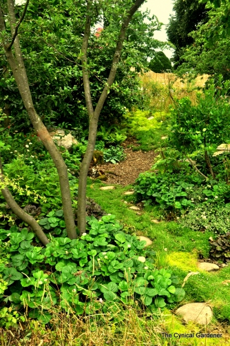 Rich, naturalistic planting.