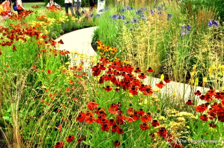 Perennial Sanctuary Garden, Bright hot colours.