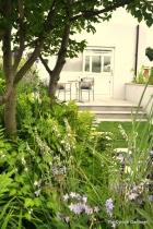 The Urban Rain Garden
