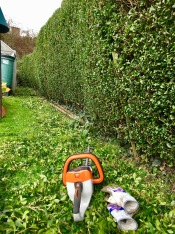 Stihl Cordless Hedgecutter