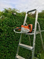 Sthil Cordless Hedge Cutter