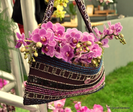 Orchids in Handbags