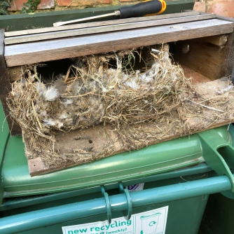 Nest Box cleaning