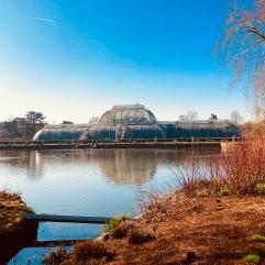 Palm House. Kew